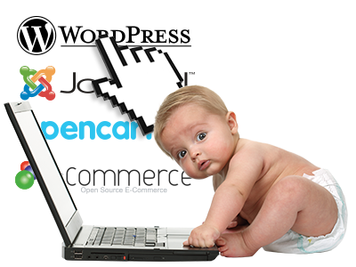 Easy-to-use Website Installer